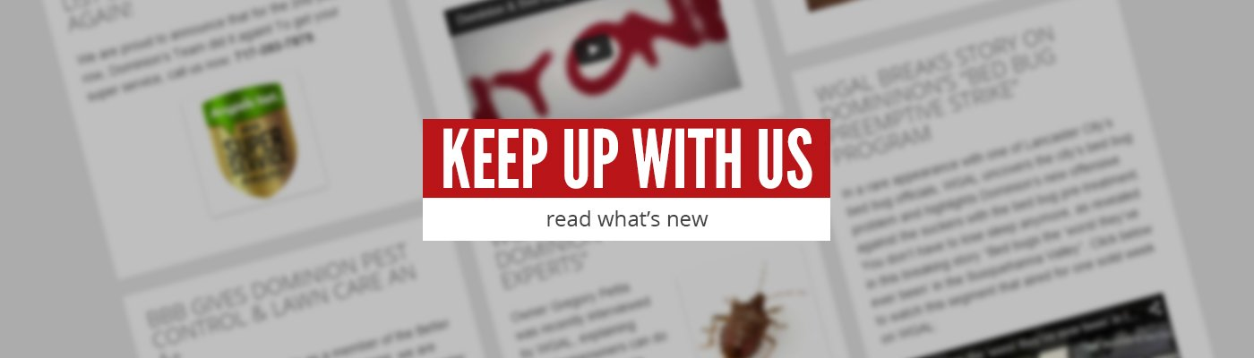 Keep up with us, read what's new
