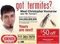 mr-termite1